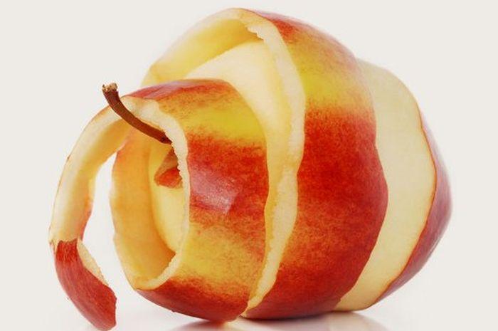 Manfaat Kulit Apel Bagi Kesehatan Tubuh