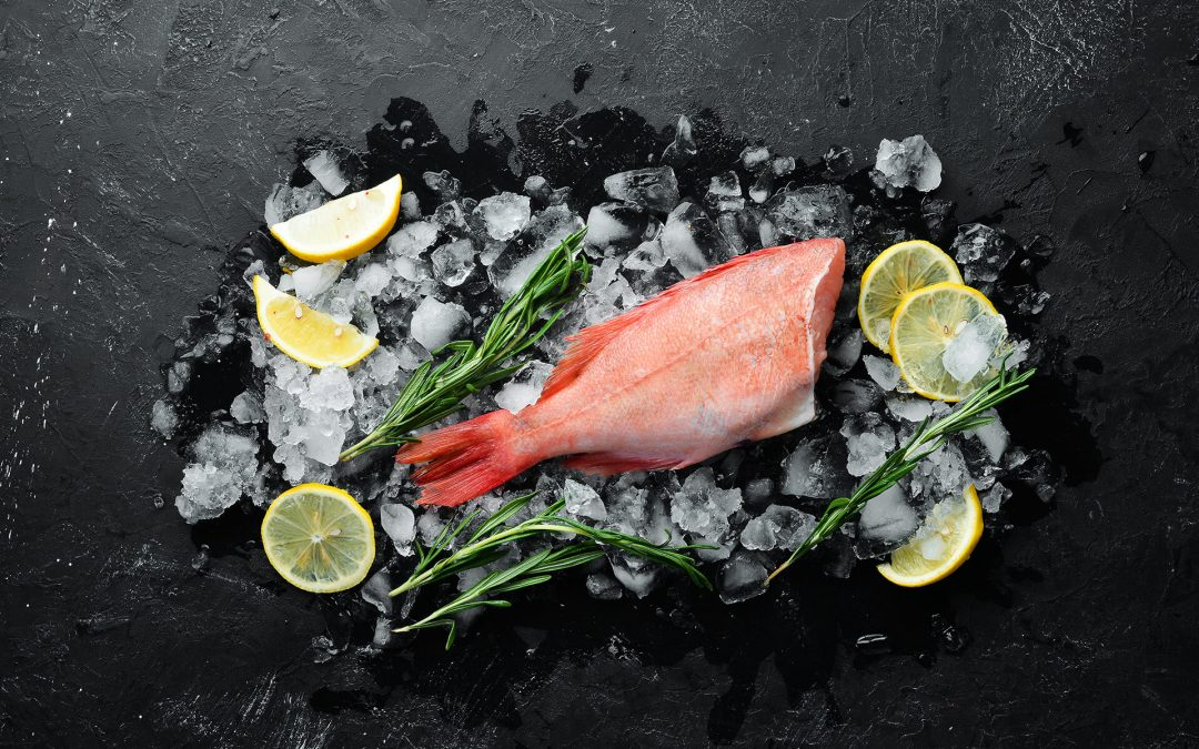 Selain Enak, Ternyata Ikan Kakap Banyak Manfaat